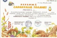 Diplome obținute de elevii de la Școala Gimnazială Eugen Barbu - 2019