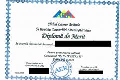 Diplome obținute de elevii de la Școala Gimnazială Eugen Barbu - 2021